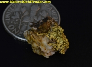 1.28 Gram El Dorado California Gold & Quartz