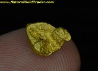 1.13 Gram Baker County Oregon Gold Nugget