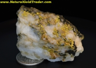 30.44 Gram Canyon City Oregon Dendrite Gold