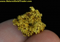 3.87 Gram Ibex Mine Colorado Crystalline Gold