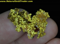 4.98 Gram El Dorado CA Natural Gold Specimen