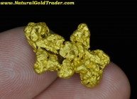 7.35 Gram Gold Basin Arizona Gold Nugget