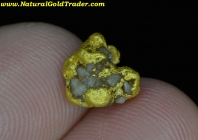 2.11 G. Gold Basin AZ. Gold Nugget w-Quartz