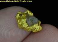 2.48 G. Mohave County Arizona Gold Nugget