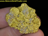 17.35 Gram Oregon Gold Nugget with Quartz