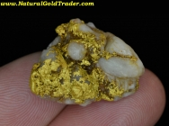 10.37 Gram Kingman Arizona Gold & Quartz