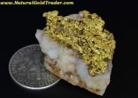 10.14 Gram California Gold & Quartz Specimen