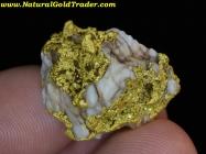 15.16 Gram El Dorado California Gold & Quartz