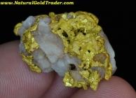 23.62 G. Sonora Mexico Gold & Quartz Specimen
