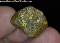10.17 Gram Elk City Idaho Gold & Quartz