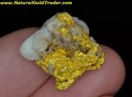 10.34 Gram Kalgoorlie Australia Gold & Quartz