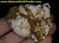 159.07 G. El Dorado CA. Gold & Quartz Specimen