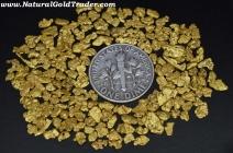 10.25 Grams of Alaska Gold Nuggets
