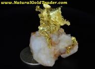 16.92 G. El Dorado CA. Leaf Gold Specimen