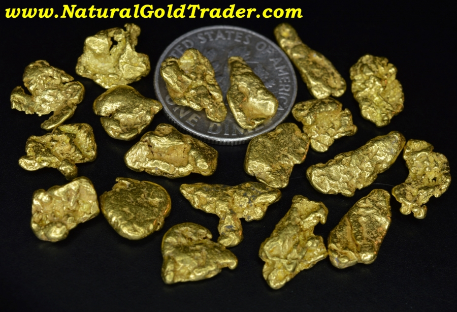 Download .5 ozt.+ 15.71 Grams (19) British Columbia Gold Nuggets