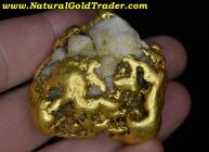 164.98 G. Huge Alaskan Gold Quartz Nugget