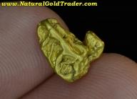 1.97 G. Northern Nevada Gold Nugget Specimen