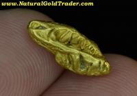 2.18 G Rye-Patch Nevada Gold Nugget Specimen