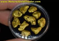 1 Ozt.+ 31.19 Grams (10) Alaskan Gold Nuggets