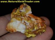 29.59 G. California Leaf Gold & Quartz Specimen