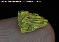 1.66 Gram Chicken Alaska Crystallized Gold
