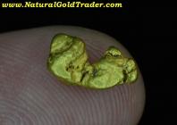 1.16 Gram El Dorado California Gold Nugget