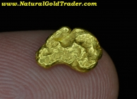 1.36 G. Yuba River CA. Natural Gold Nugget