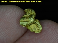 1.71 G Coarse & Chunky Canada Gold Nugget