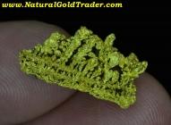 3.45 Gram Canyon City Oregon Crystallized Gold