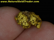 2.28 G Humboldt Co. Nevada Gold Nugget