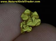 1.00 Gram El Dorado California Gold Specimen