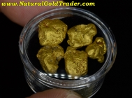 13.63 Grams (5) Coloma California Gold Nuggets