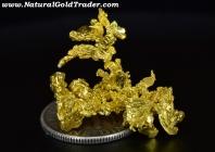4.05 Gram California Gold Specimen