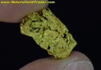 1.65 Gram Northern Nevada Gold Nugget