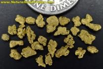 1.57 Grams of Alaska Gold Pickers/Nuggets