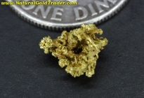 0.32 Gram Idaho Crystalline Gold Nugget