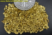 5 Gram California Placer Gold Pay-Dirt Bag