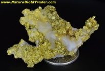 32.9 Gram California Gold & Quartz Specimen