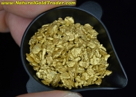 1 ozt. 31.1 Grams of Canada Gold Nuggets