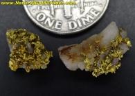 1.39 Grams (2) Oregon Gold/Quartz Specimens