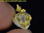 .66 Gram Nevada Gold & Quartz Specimen